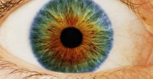risk insurance blindness